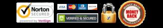 logo secure website